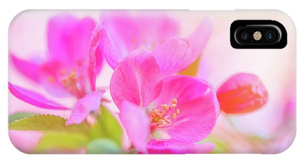 IPhone Case featuring the photograph Apple Blossoms Colorful Glow by Leland D Howard