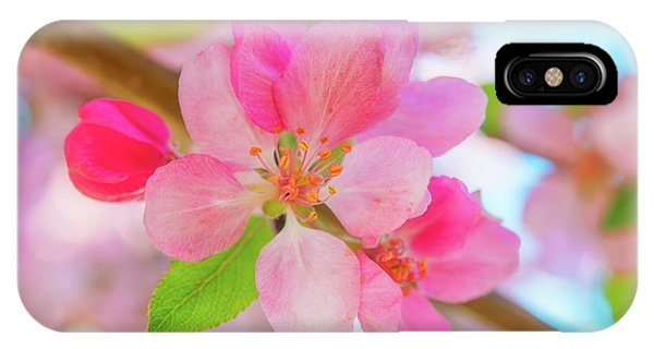 IPhone Case featuring the photograph Apple Blossoms Red And Blue by Leland D Howard