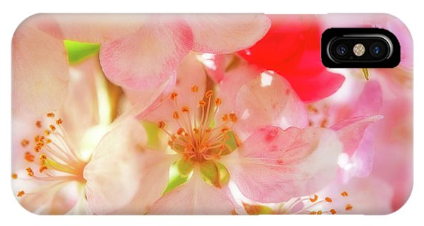 IPhone Case featuring the photograph Apple Blossoms Textures by Leland D Howard