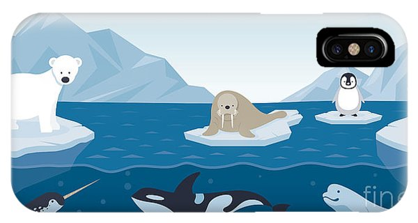 Dolphin iPhone Case - Arctic Animals Character And by Muchmania