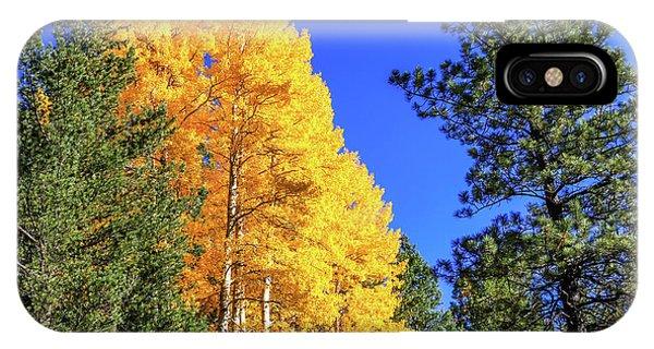 Arizona Aspens In Fall 4 IPhone Case