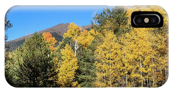 Arizona Aspens With Mountains IPhone Case