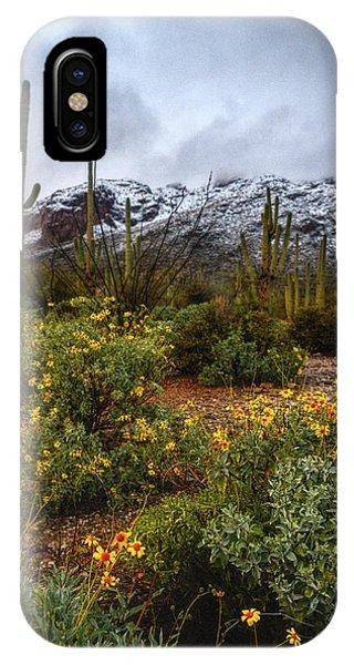 Arizona Flowers And Snow IPhone Case