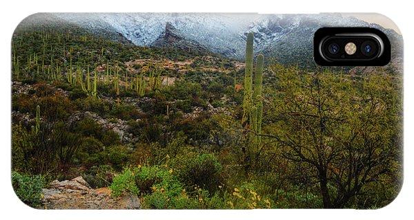 Arizona Winter Light IPhone Case