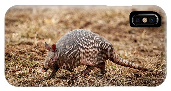 IPhone Case featuring the photograph Armadillo by Jeff Phillippi