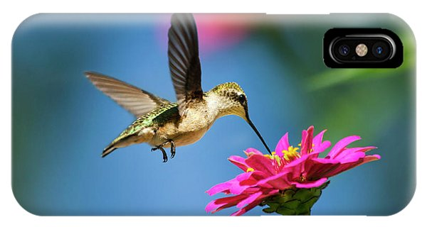 Art Of Hummingbird Flight IPhone Case