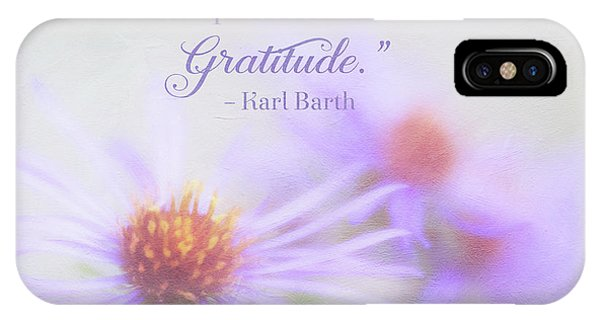 Joy And Gratitude For All Seasons IPhone Case