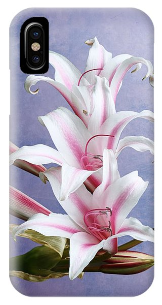 Pink Striped White Lily Flowers IPhone Case