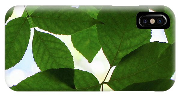 iPhone Case - Natural Patterns I by Emily Johnson