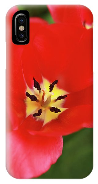 iPhone Case - Rouge Bloom by Emily Johnson