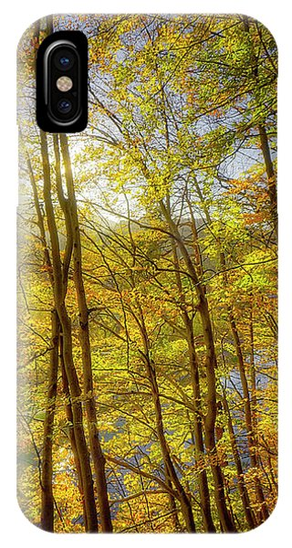 IPhone Case featuring the photograph As The Leaves Turn  by Edmund Nagele