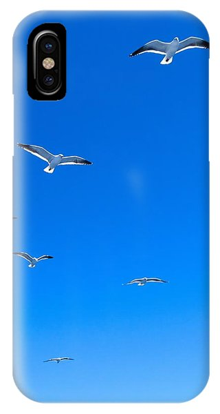 Group Of Seagulls On Blue Sky In The Argentine Patagonia IPhone Case