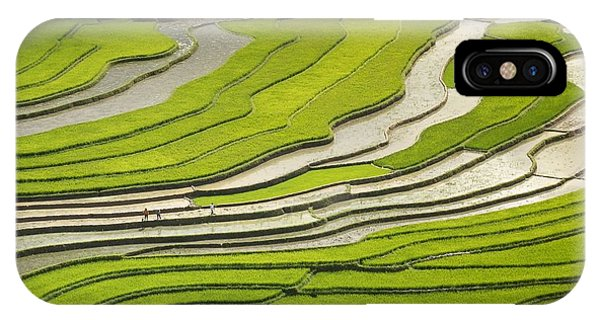 Asian Rice Field IPhone Case