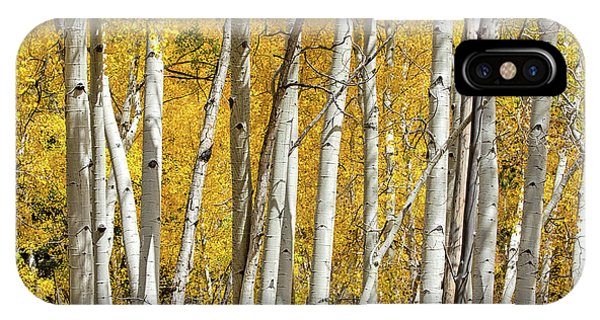 Aspen Autumn IPhone Case