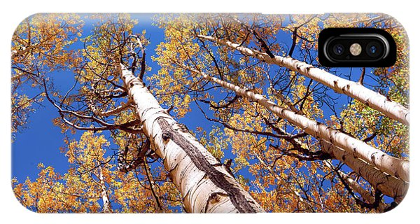 IPhone Case featuring the pyrography Aspen Trees Against The Sky In Crested Butte, Colorado.   by OLena Art Brand