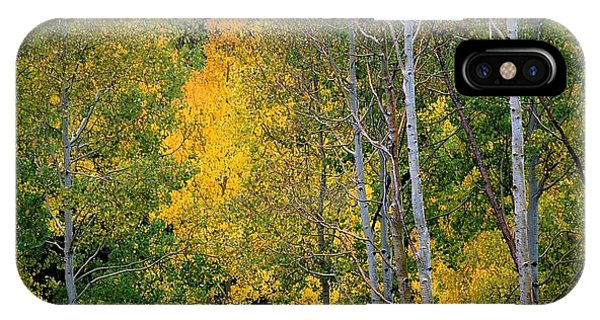 Aspens In Yellow IPhone Case