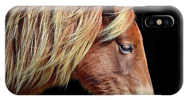 Assateague Pony Sarah's Sweet Tea Portrait On Black IPhone Case