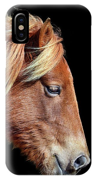 Assateague Pony Sarah's Sweet Tea Portrait On Black IPhone Case
