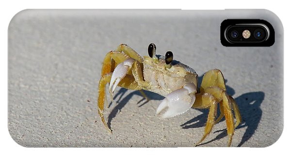 IPhone Case featuring the photograph Atlantic Ghost Crab by Thomas Kallmeyer