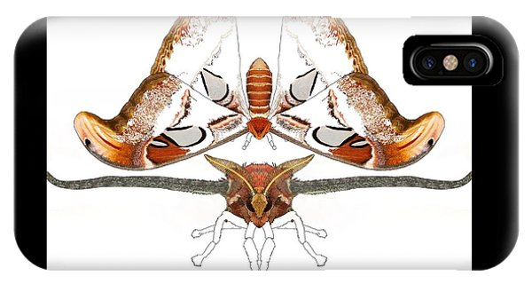 iPhone Case - Atlas Moth2 by Joan Stratton