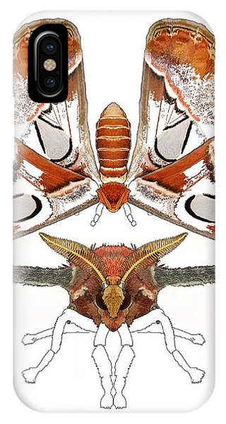 iPhone Case - Atlas Moth3 by Joan Stratton