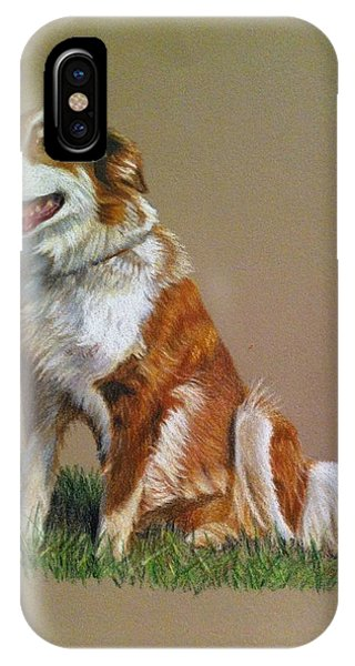 IPhone Case featuring the painting Aussie by Tammy Taylor