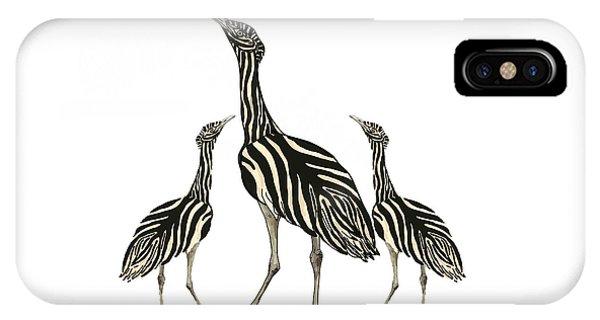 iPhone Case - Australian Bustard Zebra 3 by Joan Stratton