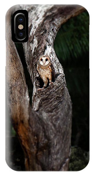 IPhone Case featuring the photograph Australian Masked Owl by Rob D Imagery