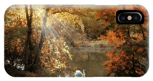Swan iPhone Case - Autumn Afterglow by Jessica Jenney