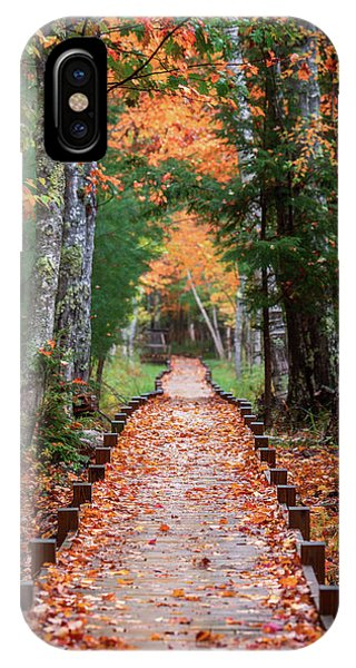 Autumn At Jesup Path IPhone Case