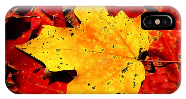 Autumn Beige Yellow Leaf On Red Leaves IPhone Case