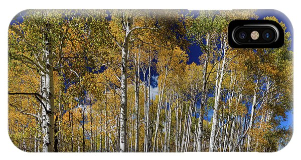 IPhone Case featuring the photograph Autumn Blue Skies by James BO Insogna