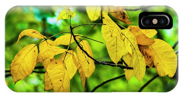 IPhone Case featuring the photograph Autumn Color Yellow by Edward Peterson