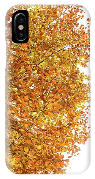 Autumn Explosion 2 IPhone Case