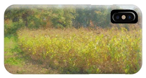 Autumn Field In Sunlight IPhone Case