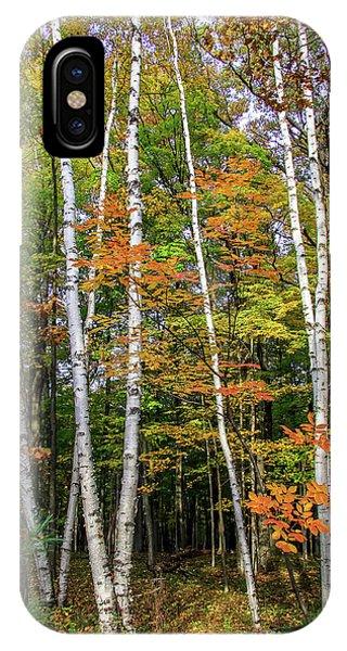 Autumn Grove, Vertical IPhone Case