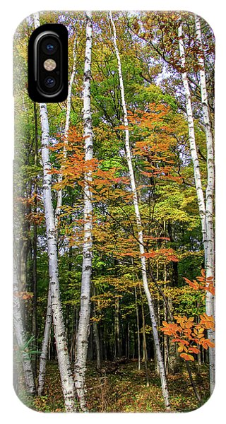 Autumn Grove, Vertical IPhone Case