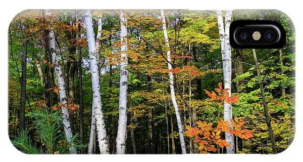 Autumn Grove, Wisconsin IPhone Case