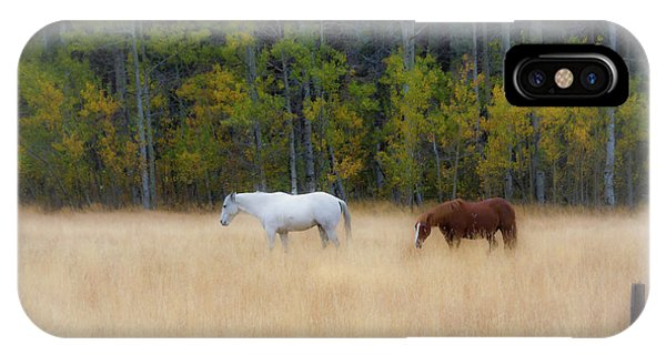 Autumn Horse Meadow IPhone Case