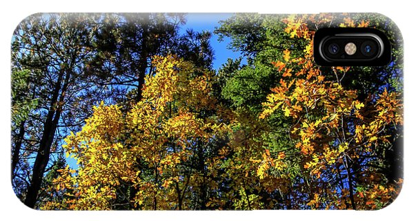 Autumn In Apache Sitgreaves National Forest, Arizona IPhone Case
