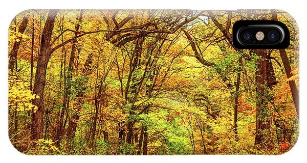 Roxbury iPhone Case - Autumn In Boston's Franklin Park by Denis Tangney Jr
