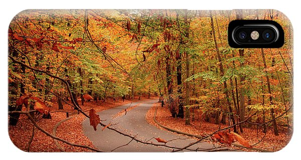 Autumn In Holmdel Park IPhone Case