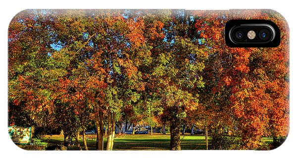 IPhone Case featuring the photograph Autumn In Reaney Park by David Patterson