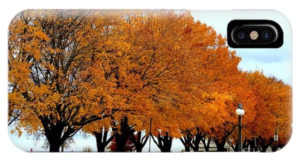 Autumn Leaves In Menominee Michigan IPhone Case