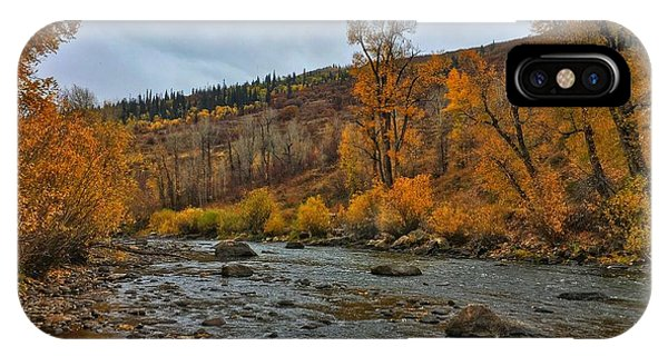 IPhone Case featuring the photograph Autumn On The Yampa River by Dan Miller