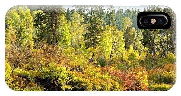 Autumn Scene, Deschutes River Phone Case by Michel Hersen