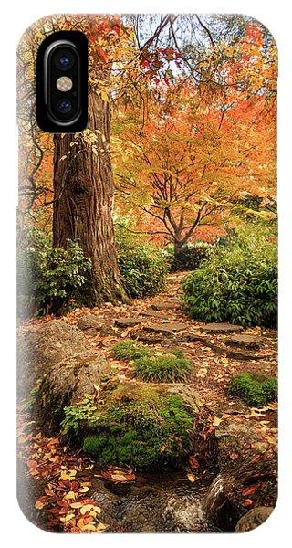 Autumn Stream In Lithia Park IPhone Case