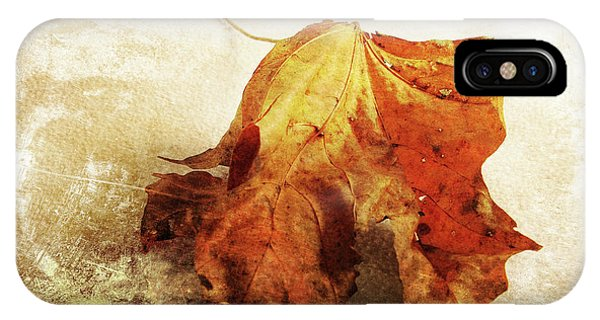 IPhone Case featuring the photograph Autumn Texture by Randi Grace Nilsberg