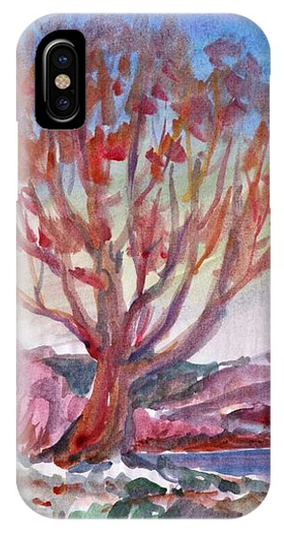 Autumn Tree By The River IPhone Case