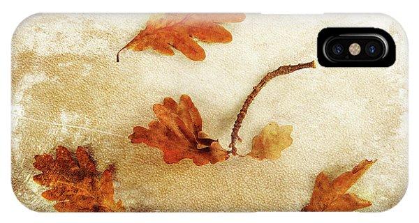 IPhone Case featuring the photograph Autumn Twist by Randi Grace Nilsberg